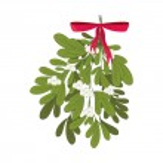 Christmas mistletoe with red ribbon vector illustr...