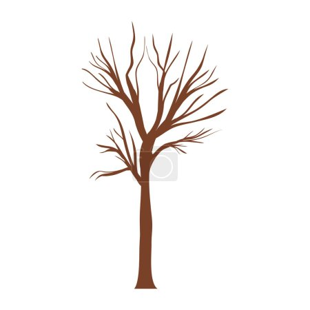 tree trunk with branchs without leaves