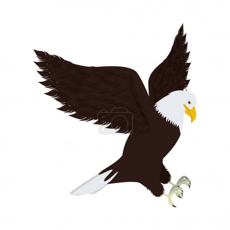 silhouette eagle in hunting position
