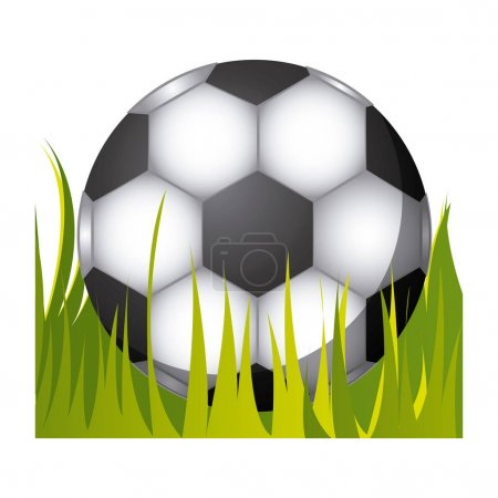 soccer ball in the grass icon