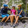 Family bike rides in mountains while relaxing on b...