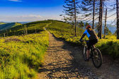 Mountain biking women riding on bike in summer mountains forest