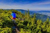 Mountain biker riding on bike in summer mountains forest landsca