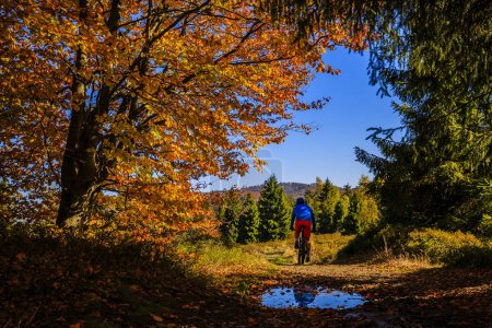 Mountain biker cycling in autumn mountains forest landscape. Man