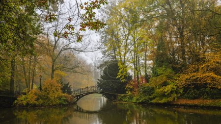 Scenic view of misty autumn landscape with beautiful old bridge