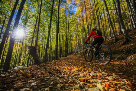 Cycling, mountain bikeing woman on cycle trail in autumn forest.