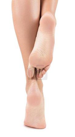 Photo pour Pieds femelles en bonne santé isolés sur fond blanc. Concept de soins des pieds. Isolé sur blanc . - image libre de droit