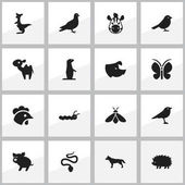 Set Of 16 Editable Nature Icons Includes Symbols Such As Kangaroo Catbird Groundhog And More Can Be Used For Web Mobile UI And Infographic Design