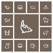 Set Of 13 Editable Zoo Outline Icons Includes Symbols Such As Bumblebee Calf Kitty And More Can Be Used For Web Mobile UI And Infographic Design