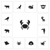 Set Of 13 Editable Animal Icons Includes Symbols Such As Arachnid Fish Kine And More Can Be Used For Web Mobile UI And Infographic Design