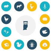 Set Of 13 Editable Zoo Icons Includes Symbols Such As Stallion Owl Sow And More