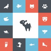 Set of 13 editable zoo icons Includes symbols such as seal beaver wild cat and more Can be used for web mobile UI and infographic design