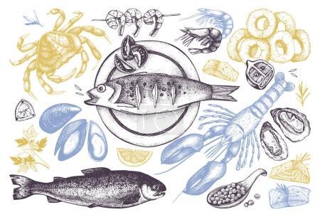 Illustration pour Fond de vecteur de fruits de mer transparente. Main sur illustration aliments de mer - poissons frais, homard, crabe, huîtres, moules, calmars et épices. Modèle Vintage. - image libre de droit