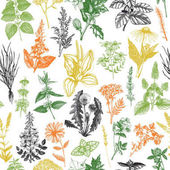 Seamless pattern with hand drawn herbs and weeds collection