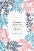 Vintage trees and shrubs in flowers illustration Vector greeting card with hand drawn wisteria black locust silver wattle albizia sketch