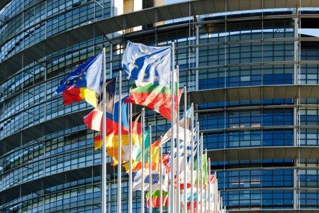 All Eu Flags Eurozone waving against European parliament buildin