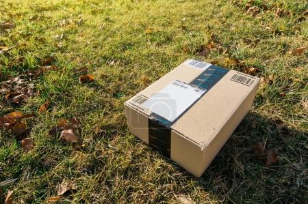 Amazon box in garden grass