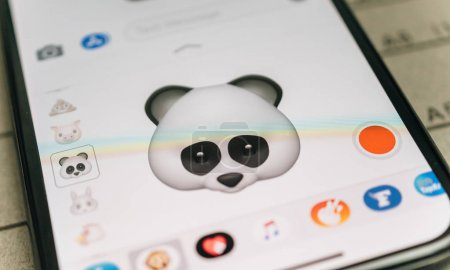 Panda bear 3d animoji emoji generated by Face ID facial  iphone