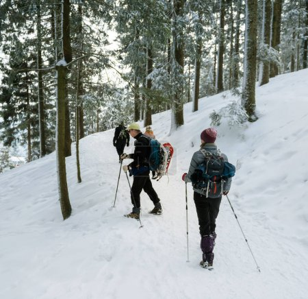 Tourists in Black Forest mountains on ski equipment