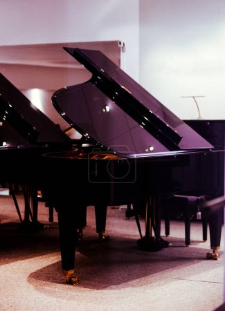 Luxury piano grand roayl concert in luxury room