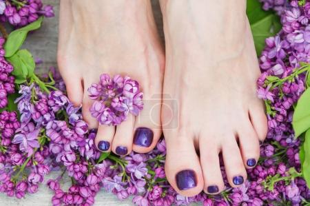 Photo pour Femme pieds avec pédicure violet foncé et belles fleurs lilas, soin de beauté - image libre de droit