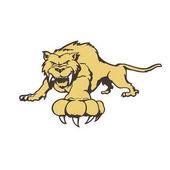 Tiger cartoon character Illustration