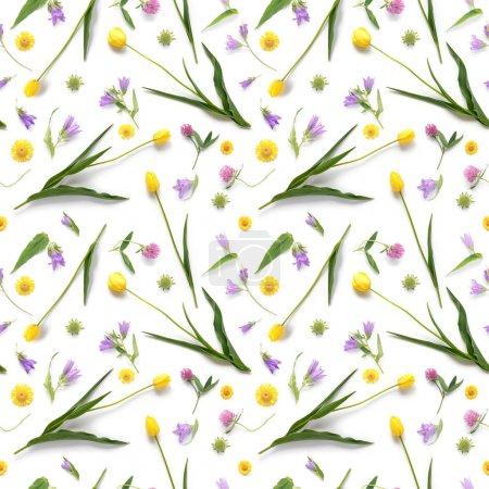 Photo pour Composition florale avec des Tulipes jaunes, bell-fleurs et trèfle fleurs sur fond blanc - image libre de droit