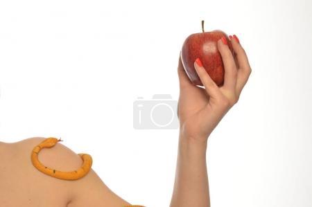 Photo pour Image métaphorique de la symbolique d'Adam et Eve 0015 - image libre de droit
