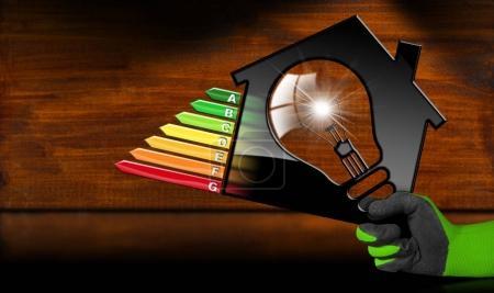 Energy Efficiency - Model House and Light Bulb