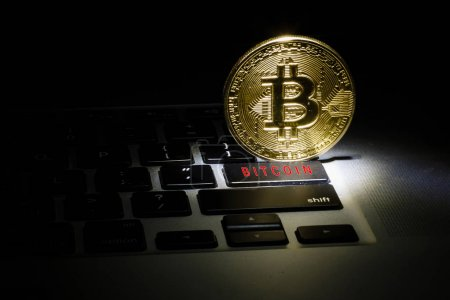 Golden bitcoin new currency, accepting bitcoin for payment, fina
