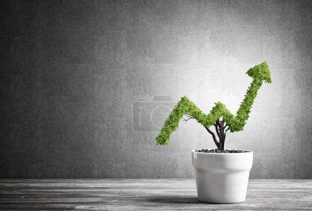Concept of investment income and growth