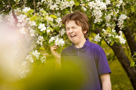 allergy sneeze child boy in the apple trees garden with white flowers