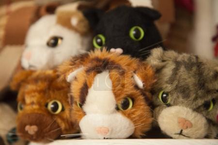 cat plush funny toys