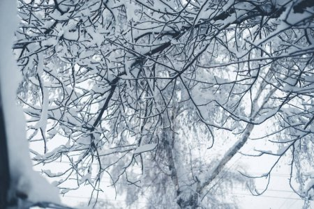 Photo for Winter snowfall in the village. Snowy collapse. - Royalty Free Image