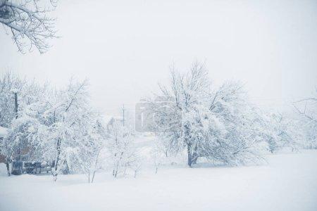 Photo pour Neige d'hiver dans le village. Chute de neige. - image libre de droit