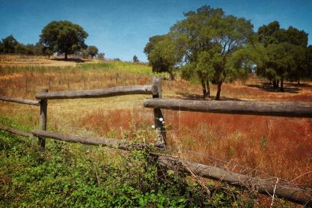 countryside landscape with wooden fence