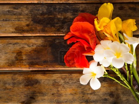 Red, Yellow Canna and Plumeria flower on wooden ba...