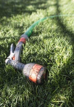 Garden hose and sprayer