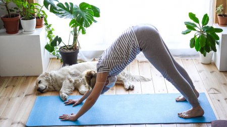 Photo for Stay at home. woman doing yoga in the living room during quarantine, a large dog is lying nearby, exercise salute to the sun - Royalty Free Image
