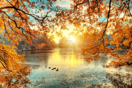 Beautiful colored trees with lake in autumn, landscape photograp
