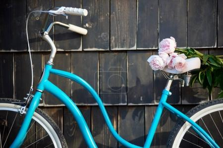 Close-up of blue vintage bicycle with bouquet of gently pink peonies on dark wall background