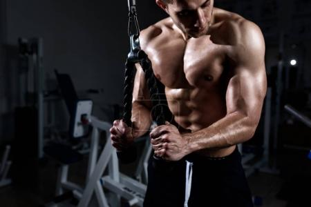 Photo for Muscular young man training triceps in the gym - Royalty Free Image