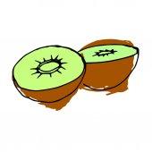 kiwi, juicy, food, ripe, sweet, vector, background, tropical, organic
