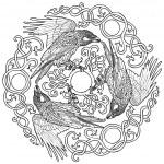 Vector illustration of three ravens viking fantasy...
