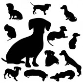 Dachshund silhouette collection different poses