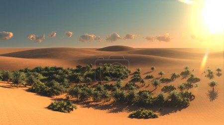 Photo for Great view on Sahara desert at sunset - Royalty Free Image