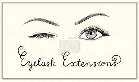 Hand drawn vector winked  eyes with long lashes.