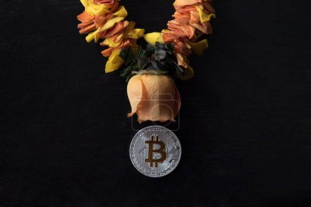 Bitcoin and rose flower