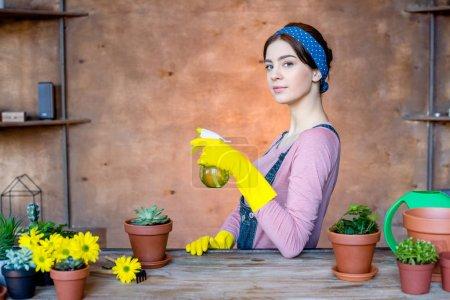 Photo pour Jeunes plantes d'arrosage attrayantes pour jardinières avec flacon pulvérisateur - image libre de droit