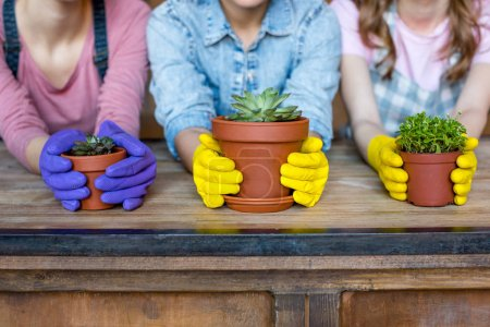 Photo for Young women in rubber gloves with green plants in flowerpots - Royalty Free Image